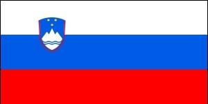 Государственный флаг Словении.jpg